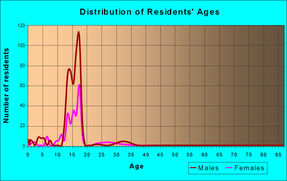 Boys Town, Nebraska Age and Sex of Residents