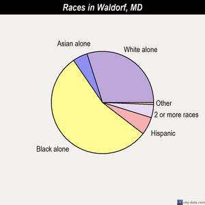 Waldorf races chart