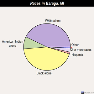 Baraga races chart