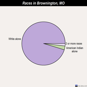 Brownington races chart