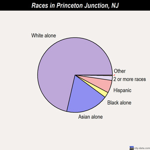 Princeton Junction races chart