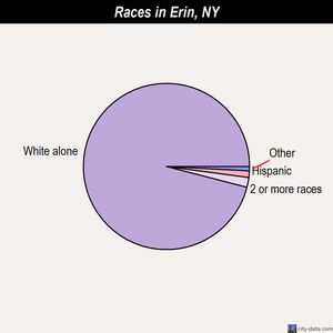 Erin races chart