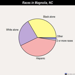 Magnolia races chart