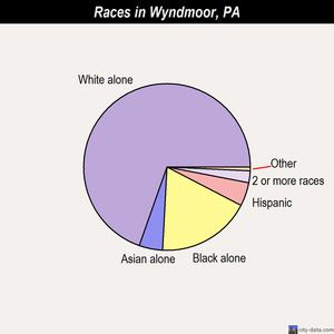 Wyndmoor races chart