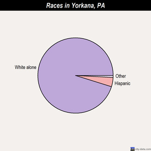 Yorkana races chart