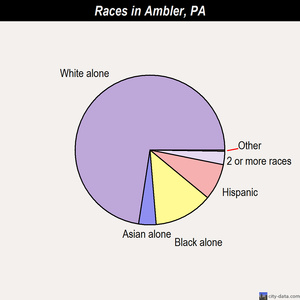 Ambler races chart