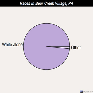 Bear Creek Village races chart
