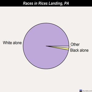 Rices Landing races chart