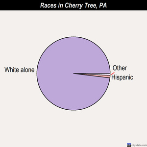 Cherry Tree races chart