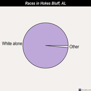 Hokes Bluff races chart