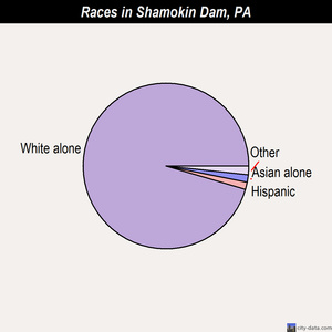 Shamokin Dam races chart