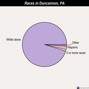 Duncannon races chart