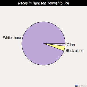Harrison Township races chart