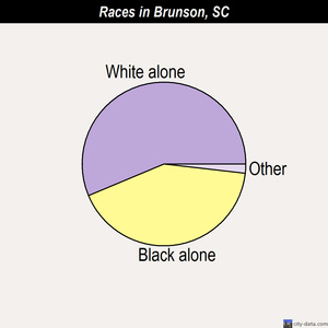 Brunson races chart