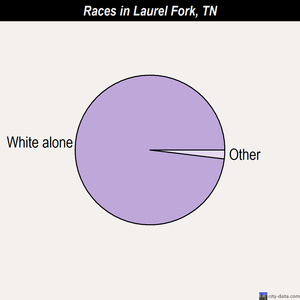 Laurel Fork races chart