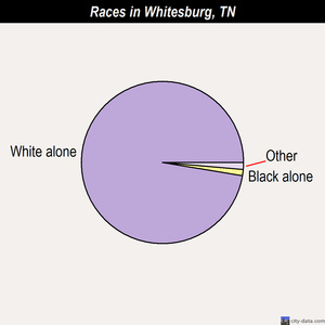 Whitesburg races chart