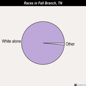 Fall Branch races chart