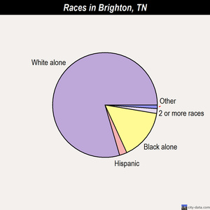 Brighton races chart