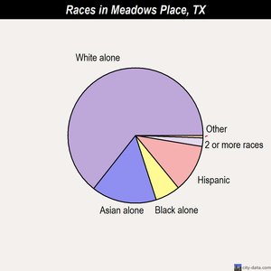 Meadows Place races chart