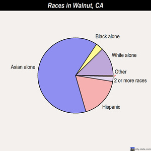 Walnut races chart