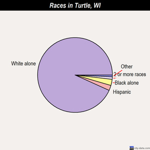 Turtle races chart