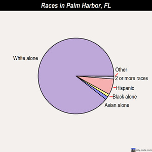 Palm Harbor races chart