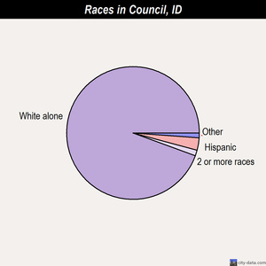 Council races chart