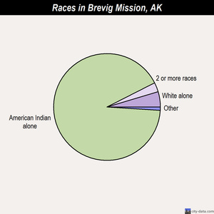 Brevig Mission races chart