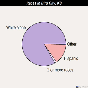 Bird City races chart