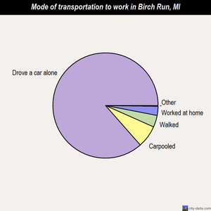 Birch Run mode of transportation to work chart