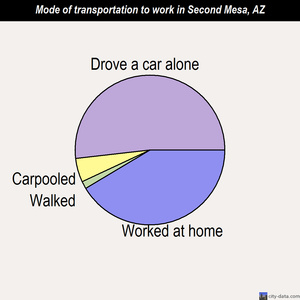 Second Mesa mode of transportation to work chart