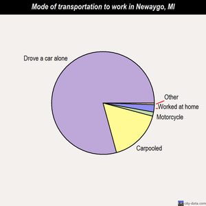 Newaygo mode of transportation to work chart