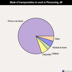 Pinconning mode of transportation to work chart