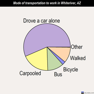 Whiteriver mode of transportation to work chart