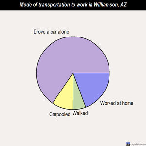 Williamson mode of transportation to work chart