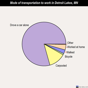 Detroit Lakes mode of transportation to work chart