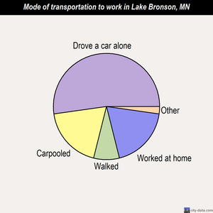 Lake Bronson mode of transportation to work chart