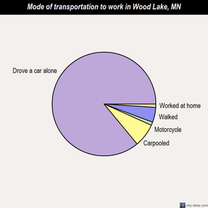 Wood Lake mode of transportation to work chart