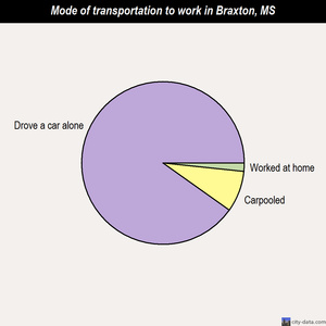 Braxton mode of transportation to work chart