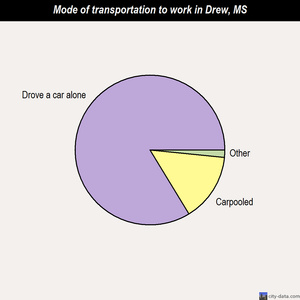 Drew mode of transportation to work chart
