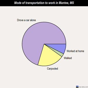 Mantee mode of transportation to work chart