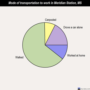 Meridian Station mode of transportation to work chart