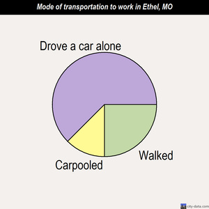 Ethel mode of transportation to work chart