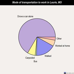 Laurie mode of transportation to work chart