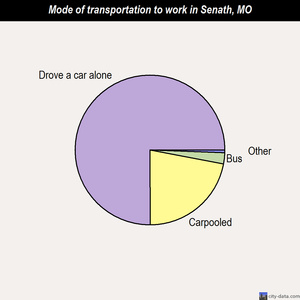 Senath mode of transportation to work chart
