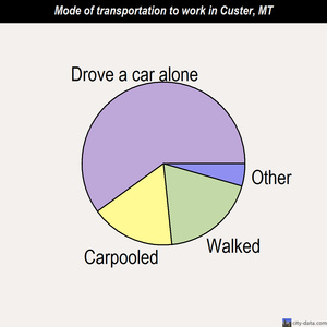 Custer mode of transportation to work chart