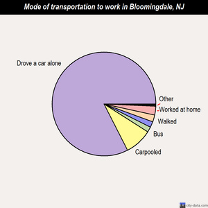 Bloomingdale mode of transportation to work chart