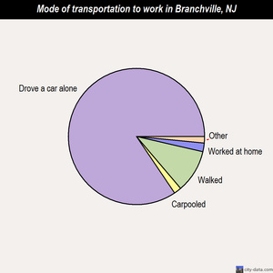 Branchville mode of transportation to work chart
