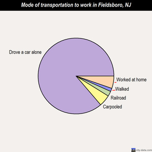 Fieldsboro mode of transportation to work chart