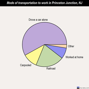 Princeton Junction mode of transportation to work chart